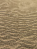 Hot desert sand, deposited by waves. Background about summer, sand and sun Stock Photography