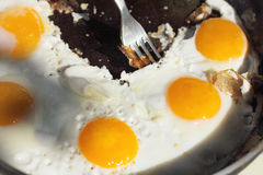 Hot dish of eggs Royalty Free Stock Photography