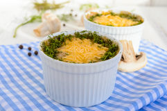 Hot dish of mushrooms, chicken baked in a creamy sauce bechamel, under a cheese crust, green decoration, in small ceramic bowls Stock Photography