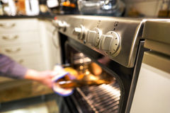 Hot dish in oven Stock Photography
