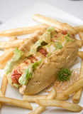 Hot dog. And french fries Royalty Free Stock Photo
