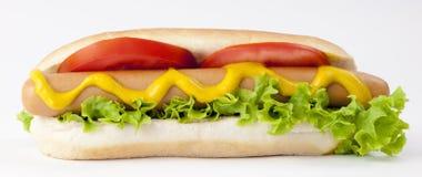 Hot Dog. Royalty Free Stock Photos