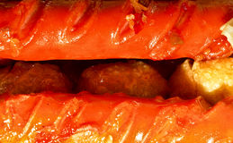 Hot dog. A crisp close up of a chili cheese dog with the focus being on the end of the hot dog Royalty Free Stock Photos