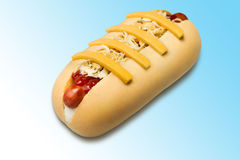 Hot dog. Isolated on gradient background Royalty Free Stock Images