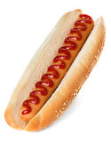 Hot Dog Obraz Stock
