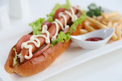 Hot dog Image stock