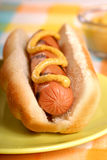 Hot Dog. Freshly grilled hot dog with spicy mustard Stock Photo