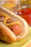 Hot Dog. Freshly grilled hot dog with spicy mustard Royalty Free Stock Photography