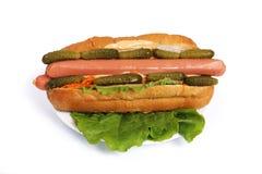 Hot dog Fotografie Stock Libere da Diritti