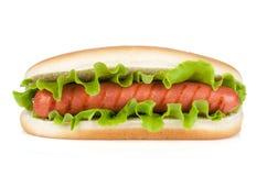 Hot-dog avec de la laitue Images stock