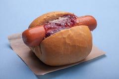 Hot dog avec de la sauce à BBQ Photos stock