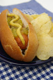 Hot-dog avec des puces. Images libres de droits