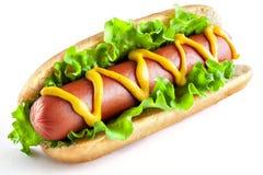 Hot-dog avec la grandes saucisse et salade images stock