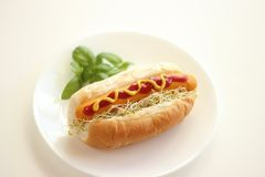 Hot dog with basil on white plate Stock Photography
