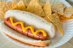 Hot dog and chips Royalty Free Stock Images