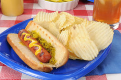 Hot dog and chips Stock Image