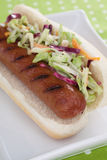Hot Dog With Coleslaw Royalty Free Stock Photo