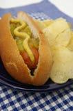 Hot dog con i chip. Immagini Stock Libere da Diritti