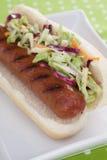 Hot dog con insalata di cavoli Fotografia Stock Libera da Diritti