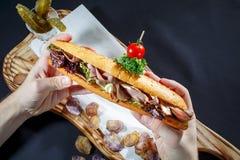Hot dog con la salsiccia, la senape ed il ketchup sull'insalata di vite Immagine Stock Libera da Diritti