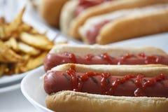 Hot dog con le fritture Fotografia Stock