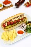 Hot dog con le patate fritte immagini stock libere da diritti