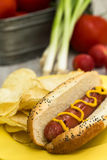Hot Dog Cookout Dinner Stock Images