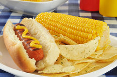 Hot dog with corn on the cob Stock Photo