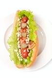 Hot dog de Chicago Photos libres de droits
