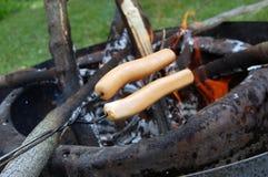 Hot dog del fuoco di accampamento immagini stock libere da diritti