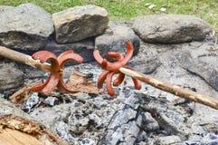 Hot dog del ragno Fotografie Stock