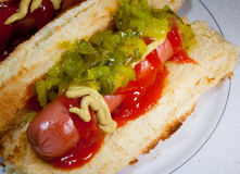 Hot dog di estate Immagine Stock
