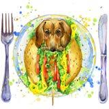Hot-dog drôle et aliments de préparation rapide Photos stock