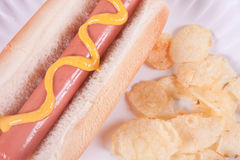 Hot Dog Extreme Closeup Royalty Free Stock Photos