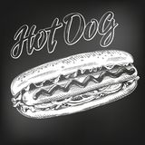 Hot dog fast food, hand drawn vector illustration sketch. chalk menu. retro style Royalty Free Stock Photo