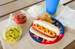 Hot dog and fixings Royalty Free Stock Photo