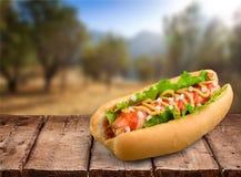 Hot Dog. Food Fast Food Sausage Mustard Gourmet royalty free stock image