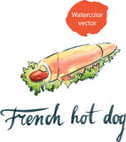 Hot-dog français d'aquarelle avec de la laitue et la moutarde Photos libres de droits