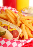 Hot dog with french fries. Freshly grilled hot dog with french fries and condiments Stock Photos