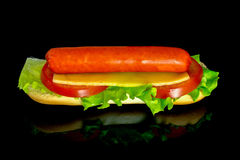 Hot dog with fresh leaf lettuce two slices of tomato and sliced cheese with reflection isolated on a black. Background stock photography