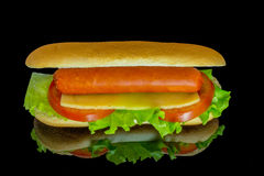 Hot dog with fresh leaf lettuce two slices of tomato and sliced cheese with reflection isolated on a black. Background royalty free stock image