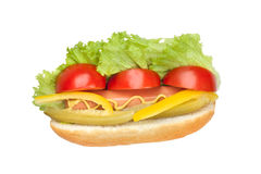 Hot dog with fresh vegetables. Hot dog with fresh tomato, salad, yellow peppers and pickled cucumber seasoned with mustard isolated on a white background Stock Photography