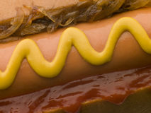 Hot Dog with Fried Onions Royalty Free Stock Photos