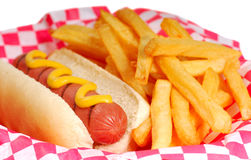Hot dog with fries. Freshly grilled hot dog with mustard and french fries Royalty Free Stock Photography