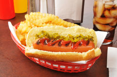 Hot dog and fries Royalty Free Stock Photos