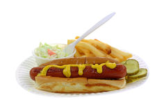 Hot Dog Fries Slaw Side View Royalty Free Stock Image