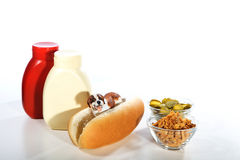 Hot dog funny Royalty Free Stock Photography