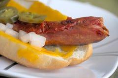 Hot dog gastronomico arrostito Immagine Stock