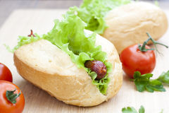 Hot dog. Grilled hot dogs with fresh salad lettuce on wooden table. Royalty Free Stock Images