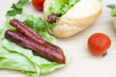 Hot dog. Grilled hot dogs with fresh salad lettuce on wooden table. Royalty Free Stock Photography